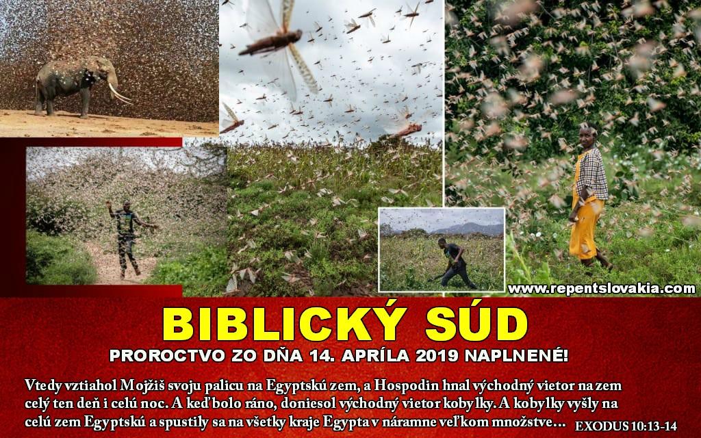SJ BIBLICKY SUDo